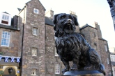 A statue of Greyfriars Bobby, the dog that allegedly sat on his master's grave for 14 years before his own death.