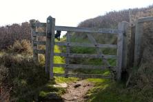 We hiked around the coastal trail, through fences and around farmland.