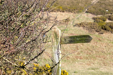 A signpost leading us home.